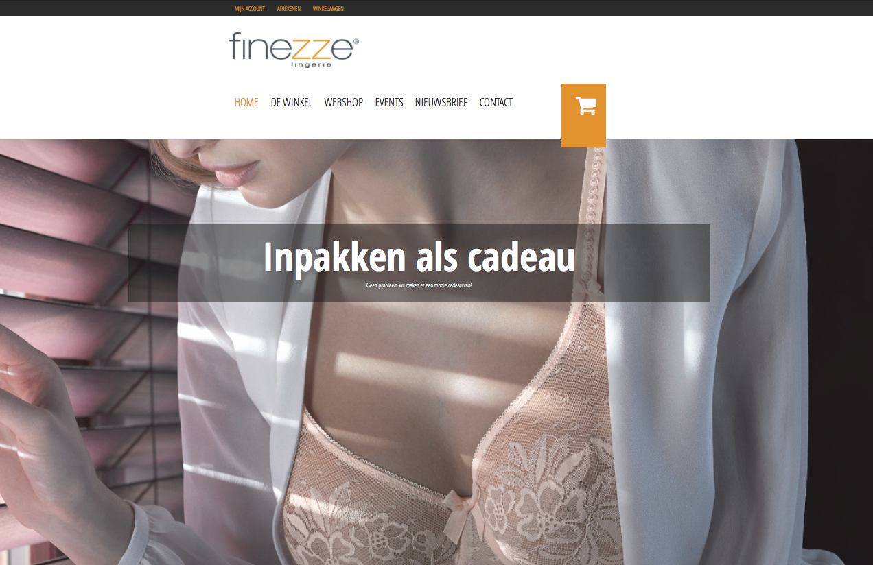 WordPress website-Finezze
