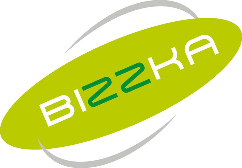 Logo ontwerp Bizzka